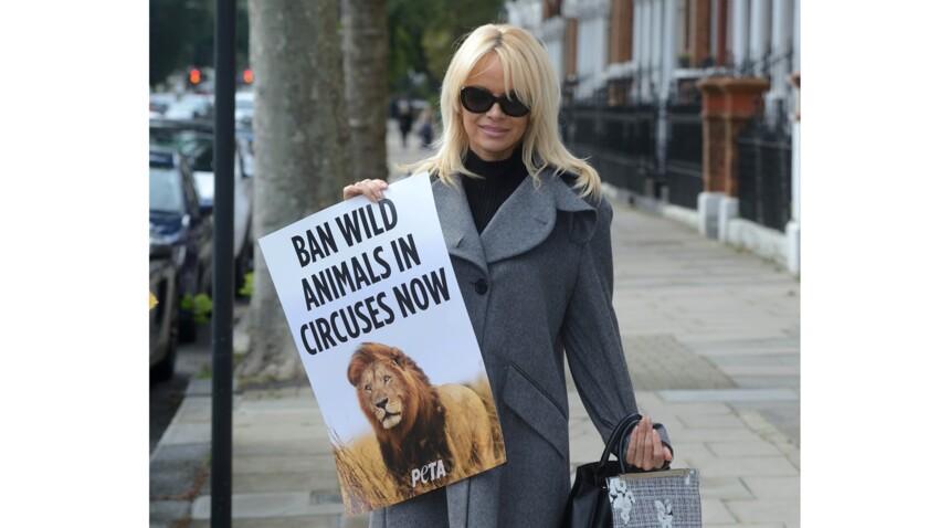 Pamela Anderson veut rencontrer Emmanuel Macron pour parler des cirques