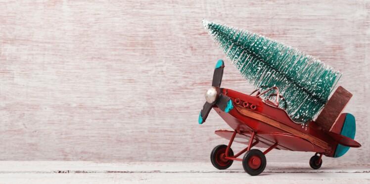 Vacances de Noël : quand acheter son billet d'avion pour payer moins cher