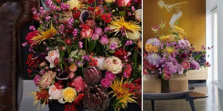 Chrysanthèmes : nos meilleurs conseils d'entretien