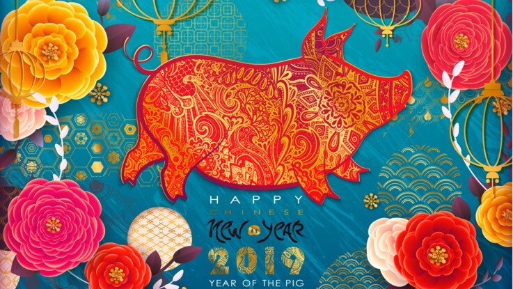 Coloriage Animaux Horoscope Chinois.Horoscope Chinois 2019 L Annee Du Cochon De Terre Les Previsions