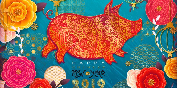 Horoscope chinois 2019, l'année du Cochon de Terre : les prévisions pour tous les signes