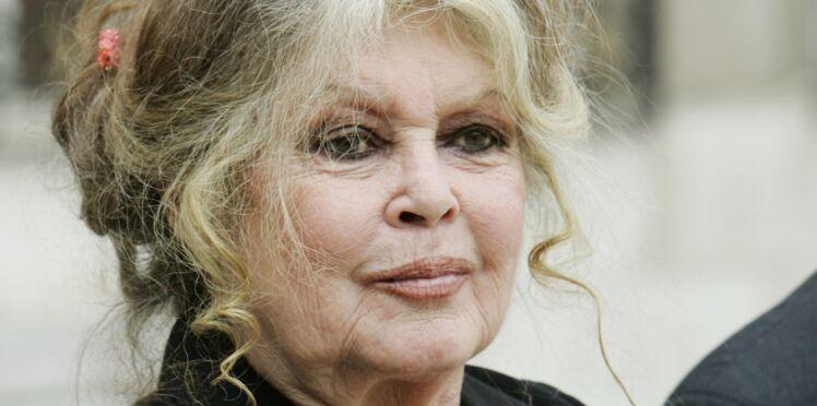 Brigitte Bardot : son coup de gueule contre les commémorations du 11 novembre
