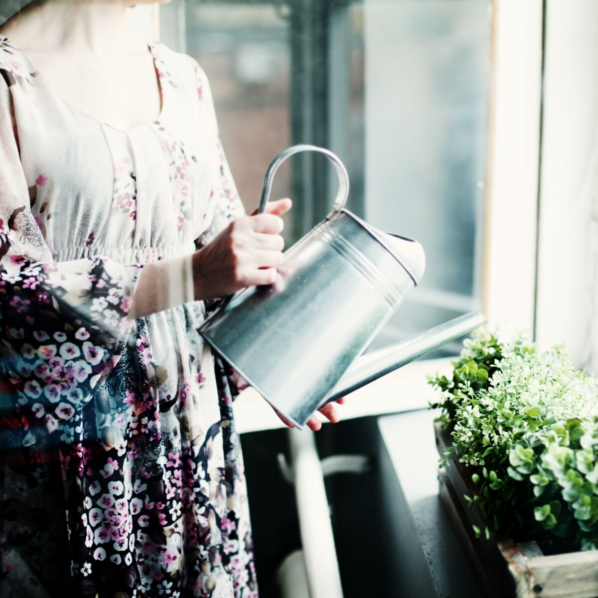 Comment Arroser Mes Plantes Pendant Les Vacances l'astuce pour savoir s'il est temps d'arroser sa plante