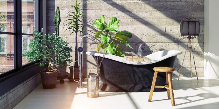 Décoration de salle de bains : comment choisir le bon style