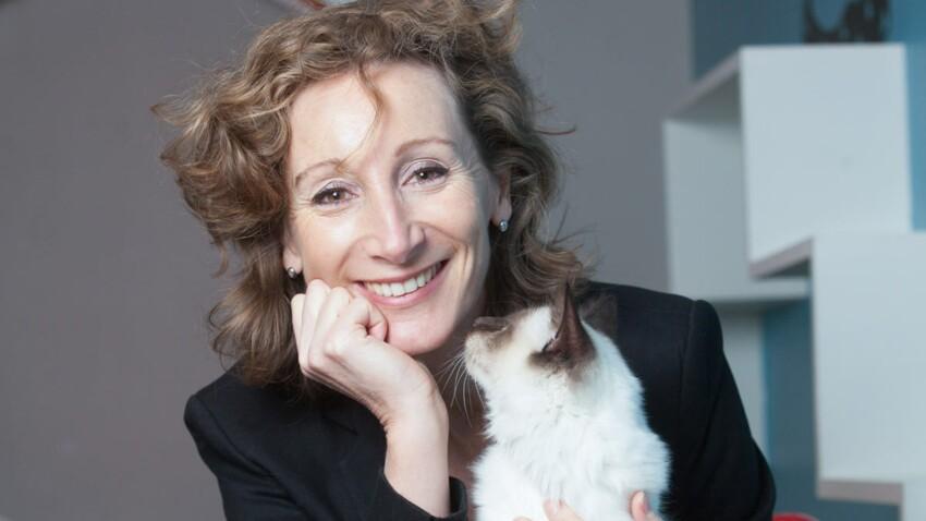 Education du chaton : les conseils du vétérinaire comportementaliste