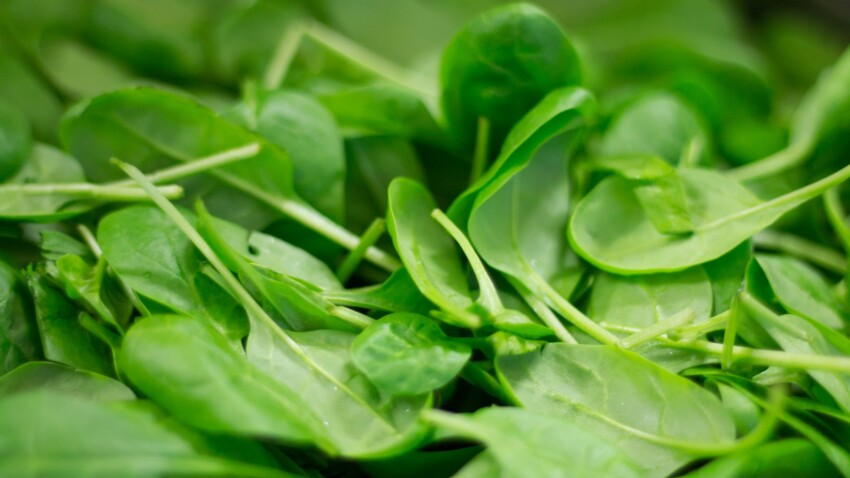 Concentration, mémoire… 10 aliments qui protègent notre cerveau