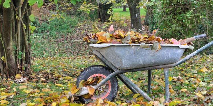Pourquoi il ne faut jamais brûler les feuilles mortes du jardin