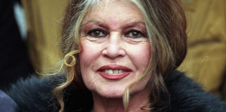 Photos - Brigitte Bardot, amaigrie, apporte son soutien aux gilets jaunes avec un cliché étonnant