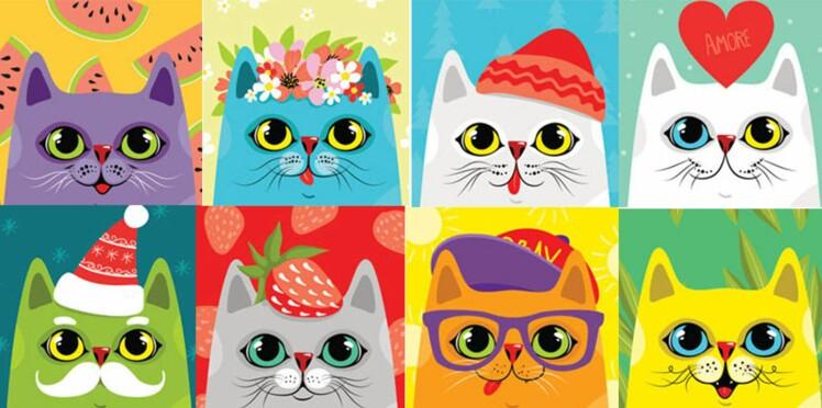 Horoscope : portrait de votre chat selon son signe astrologique
