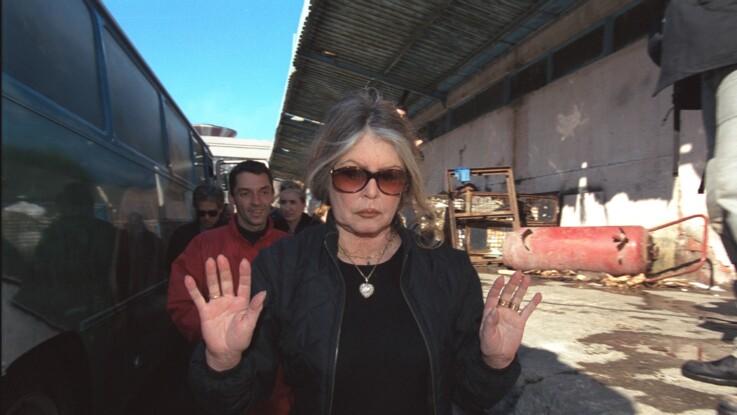 """Brigitte Bardot dézingue Emmanuel Macron : """"Je lui souhaite une bonne jaunisse"""""""