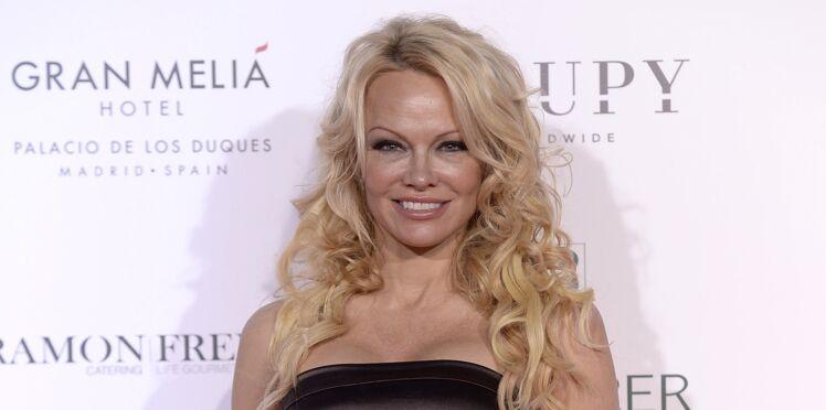 """Pamela Anderson défend à son tour le mouvement des Gilets jaunes face aux """"élites"""""""