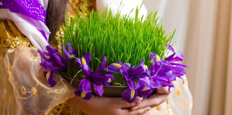 Blé de la Sainte Barbe ou blé de l'espérance, une tradition qui a du bon
