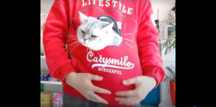 Le sweat-shirt pour emmener son chat partout