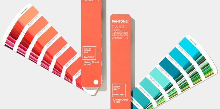 Découvrez quelle sera la couleur de l'année 2019