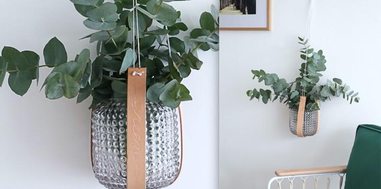 Jardin vertical, comment suspendre une plante avec 2 lanières de cuir
