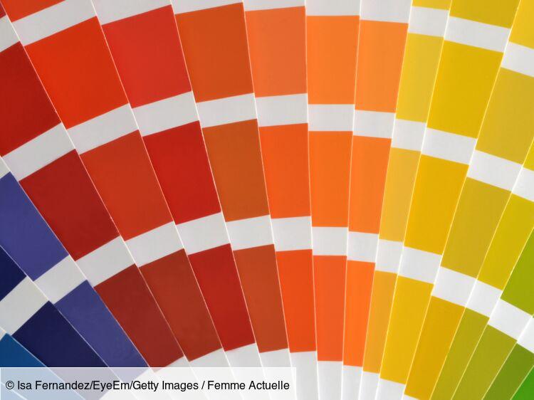 Découvrez les couleurs tendance de l\'année 2019 ! : Femme ...