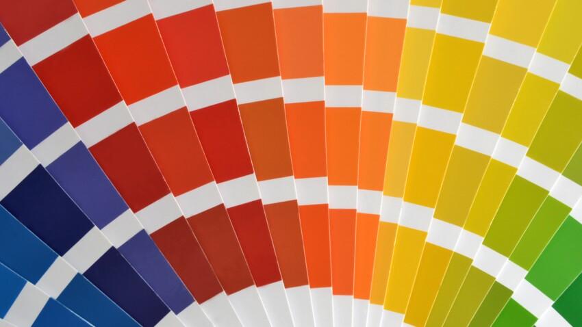 Découvrez les couleurs tendance de l'année 2019 !