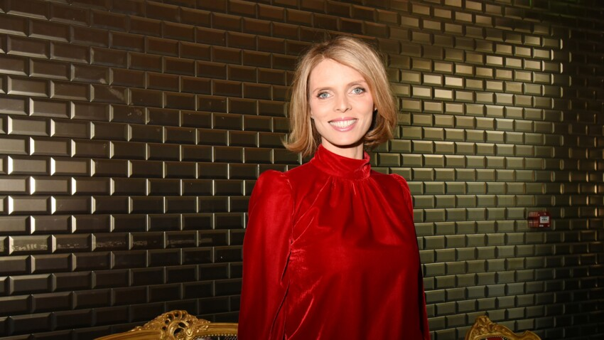 Sylvie Tellier sans maquillage : sa réponse à un commentaire malveillant