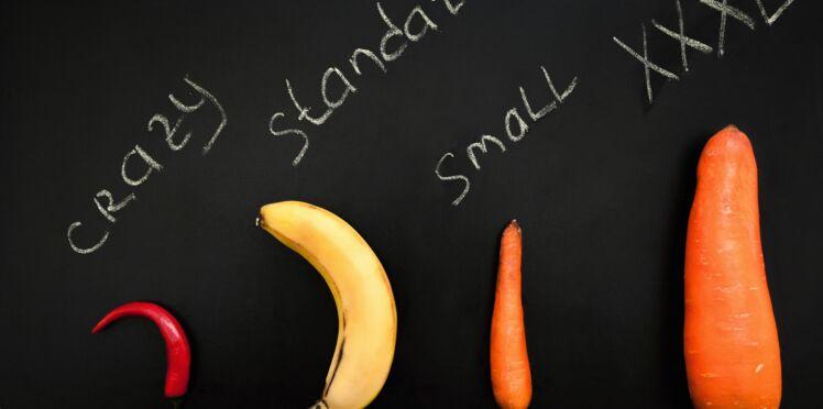 Poivron, crayon, banane… Découvrez les 7 différentes formes de pénis