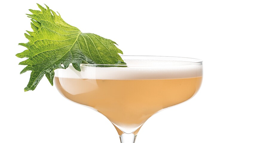 Cocktail Marie Yu