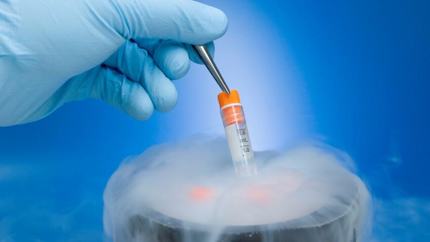 Congélation des ovocytes, pourquoi les femmes y ont recours?