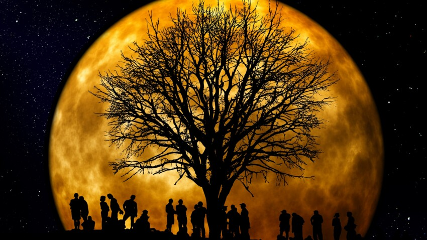 Signe lunaire : comment le connaître et ce qu'il dit de vous