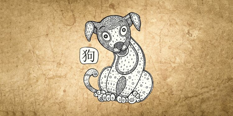 Horoscope chinois 2019 du Chien : les prévisions de Marc Angel