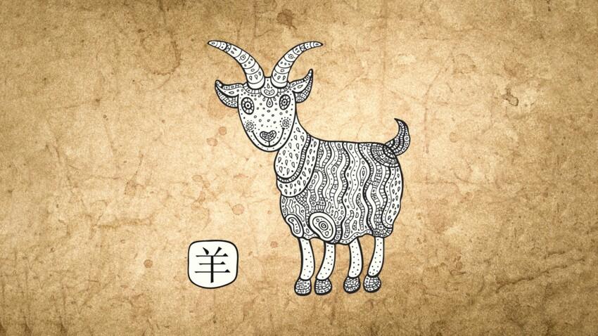 Horoscope chinois 2019 de la Chèvre ou du Mouton : les prévisions de Marc Angel