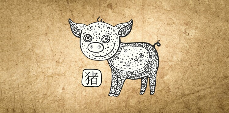 Coloriage Animaux Horoscope Chinois.Horoscope Chinois 2019 Du Cochon Les Previsions De Marc Angel