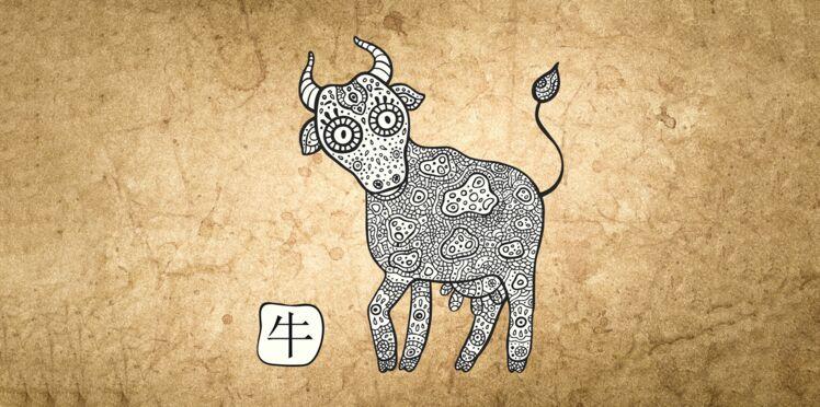 Horoscope chinois 2019 du Buffle : les prévisions de Marc Angel