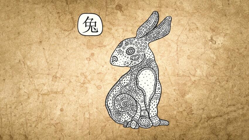 Horoscope chinois 2019 du Lapin ou du Chat : les prévisions de Marc Angel