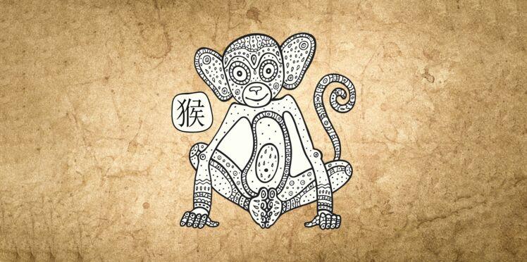 Horoscope chinois 2019 du Singe : les prévisions de Marc Angel