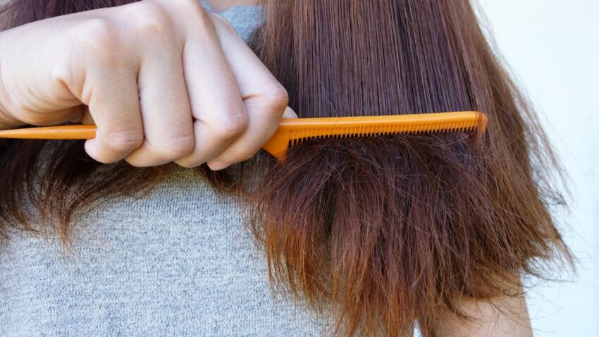 Cheveux fourchus : 3 astuces maison pour les supprimer