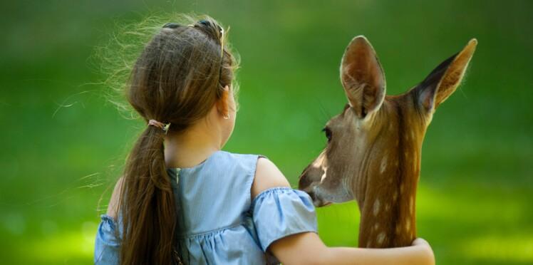 9 mesures que réclament les Français en 2019 pour les animaux