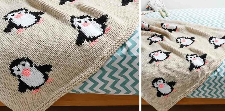 Tricot gratuit : Le plaid motifs pingouins