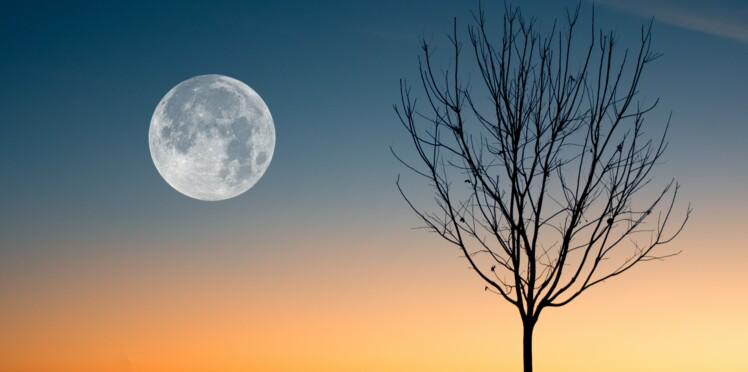 Horoscope lunaire de la semaine du 18 au 24 février 2019