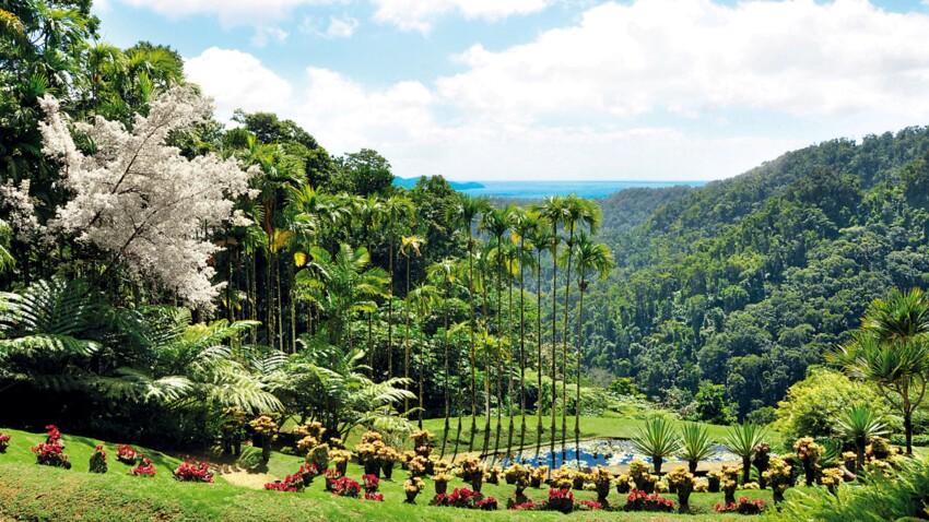 Découverte de la Martinique : les endroits à voir sur l'île