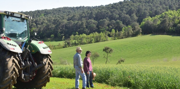 Emilie, 15 ans, lance une cagnotte pour aider ses parents agriculteurs