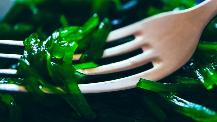 4 algues bonnes pour la santé