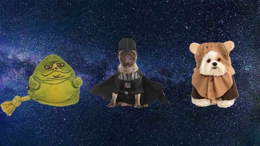 Animalis lance une collection animaux sur le thème de Star Wars