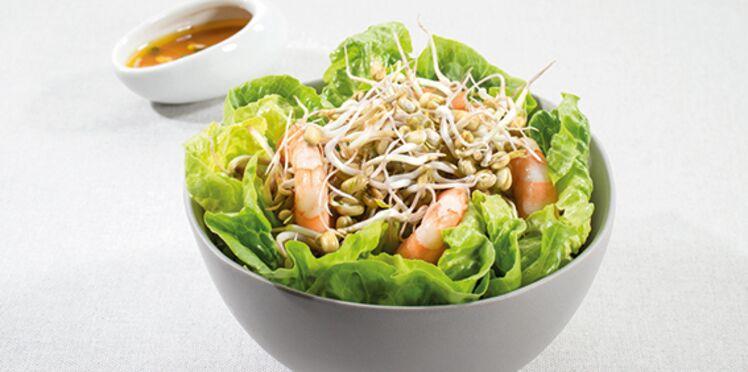 Salade exotique aux graines germées de haricot mungo
