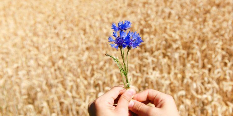 Les 12 secrets de beauté du bleuet