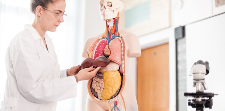 Symptômes des cancers du foie : y a-t-il des signes qui peuvent alerter ?