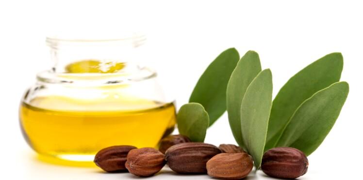 Vrai / faux : connaissez-vous bien l'huile de jojoba?