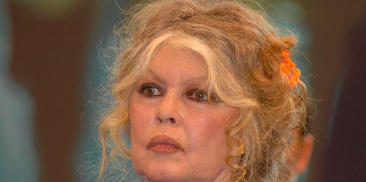 """""""Gènes de sauvages"""" : le dérapage de Brigitte Bardot sur les Réunionnais"""