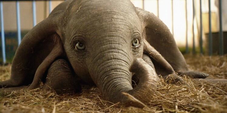 Dumbo : 5 bonnes raisons de voir le nouveau Tim Burton