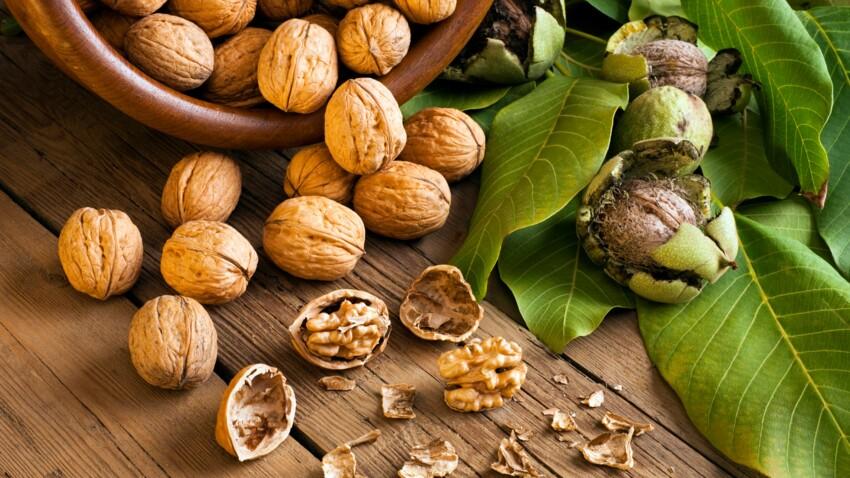 Une poignée de noix par jour pour retrouver la mémoire
