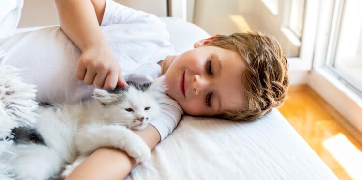 À 14 ans, il souffre de schizophrénie infectieuse après avoir été griffé par son chat
