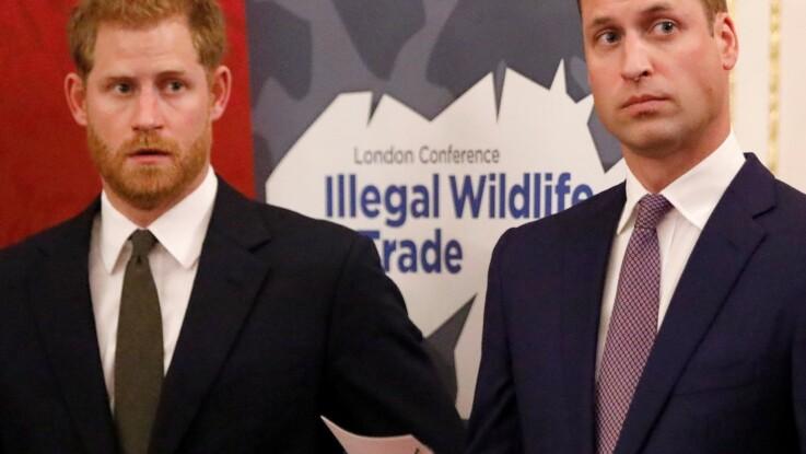 L'infidélité du prince William serait-elle à l'origine de sa brouille avec le prince Harry ?