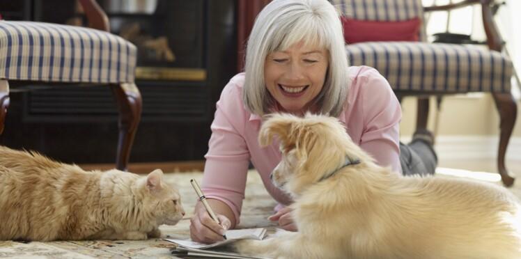 Chien ou chat : qui nous rend le plus heureux ?